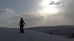 Cookie in White Sands National Monument, New Mexico